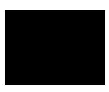 2_BSFP_black01